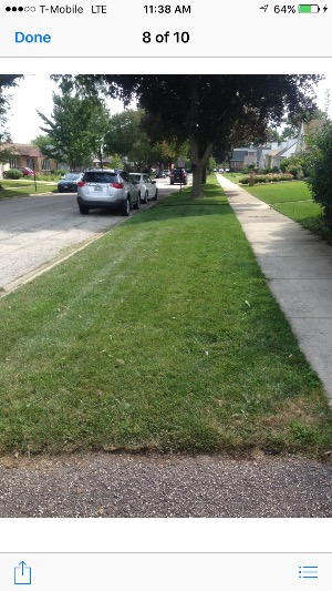 Yard mowing company in Chicago, IL, 60618