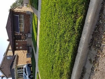 Yard mowing company in Chicago, IL, 60617