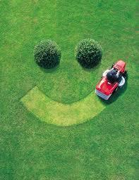 Yard mowing company in Arlington, TX, 76012