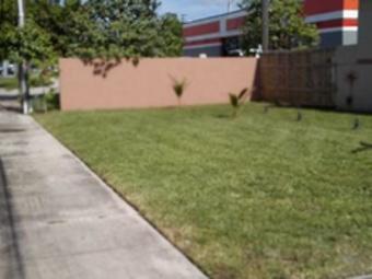 Yard mowing company in Miami, FL, 33169