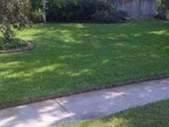 Yard mowing company in Corpus Christi, TX, 78465