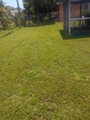 Yard mowing company in Miami, FL, 33170