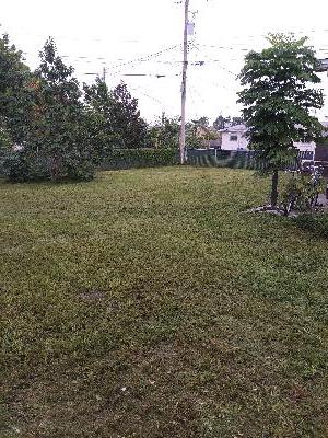 Yard mowing company in Orlando, FL, 32806