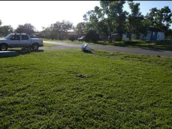 Yard mowing company in Ingleside, TX, 78382