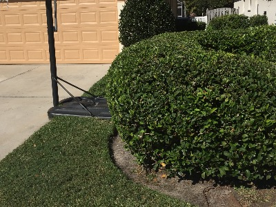 Yard mowing company in Bradenton , FL, 34205