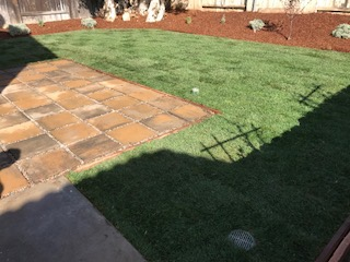 Yard mowing company in El Cajon , CA, 92019