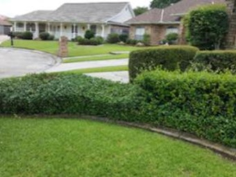 Yard mowing company in Mathews, LA, 70394