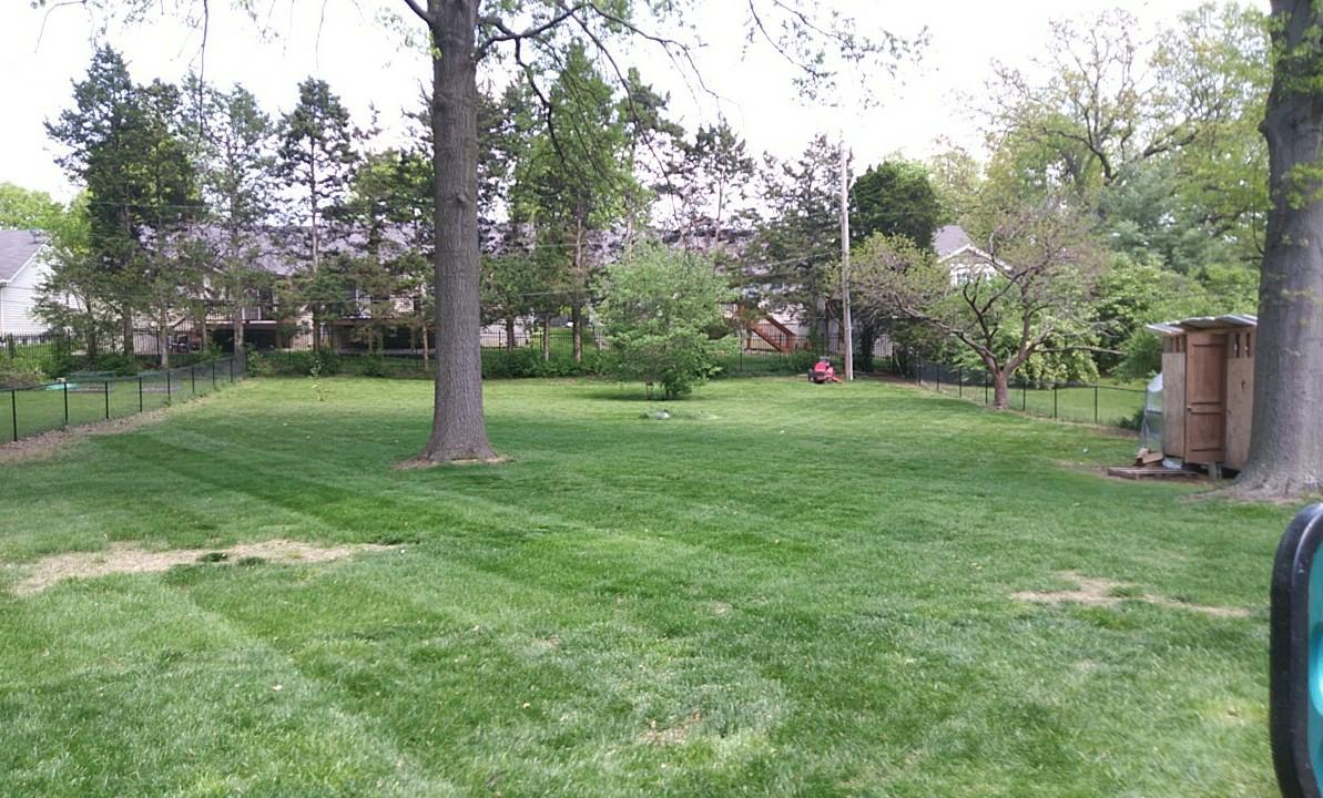 Yard mowing company in St Louis, MO, 63122