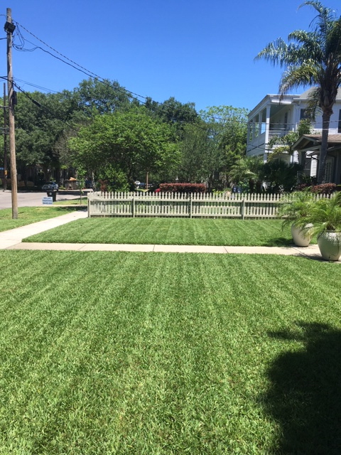 Yard mowing company in New Orleans , LA, 70122