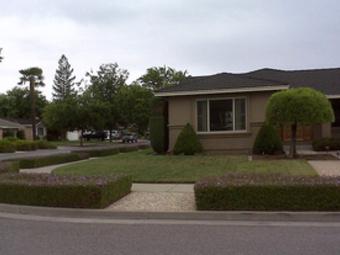Yard mowing company in San Jose, CA, 95135