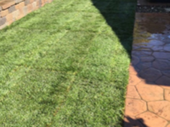 Yard mowing company in Sunnyvale, CA, 94086