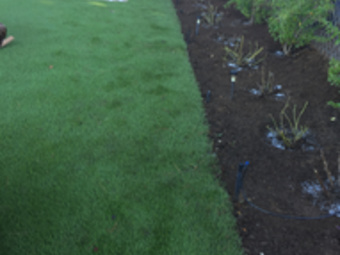 Yard mowing company in Escondido , CA, 92026