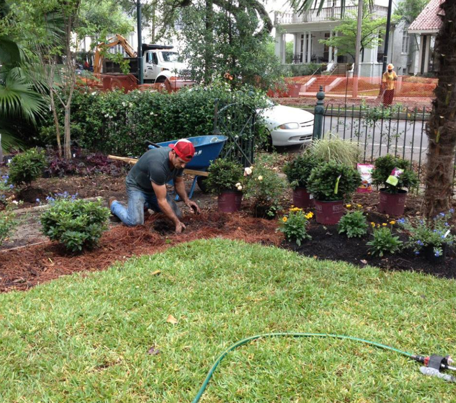 Yard mowing company in Jefferson, LA, 70121