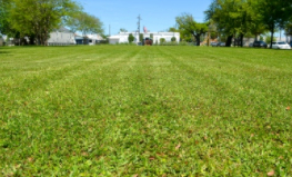 Yard mowing company in Metairie, LA, 70005