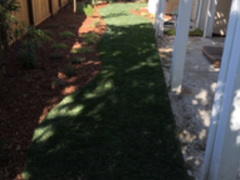 Yard mowing company in Fowler , CA, 93625
