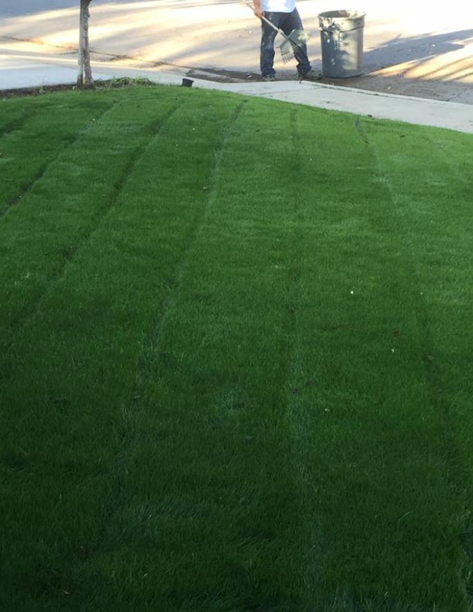 Yard mowing company in Bakersfield, CA, 93309