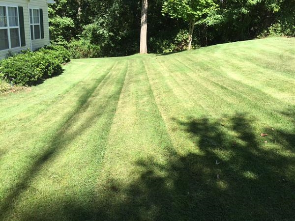 Yard mowing company in Georgetown, GA, 39854