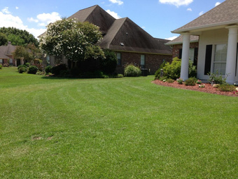 Yard mowing company in Hammond , LA, 70403