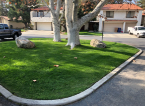 Yard mowing company in Bakersfield, CA, 93384