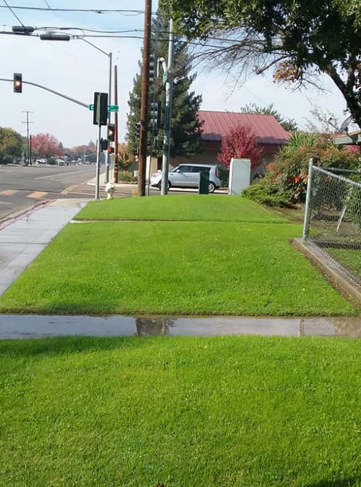 Yard mowing company in Visalia, CA, 93277