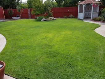 Yard mowing company in Fresno, CA, 93727