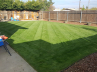 Yard mowing company in Fresno, CA, 93703