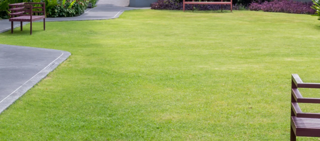 Yard mowing company in Sacramento, CA, 95817