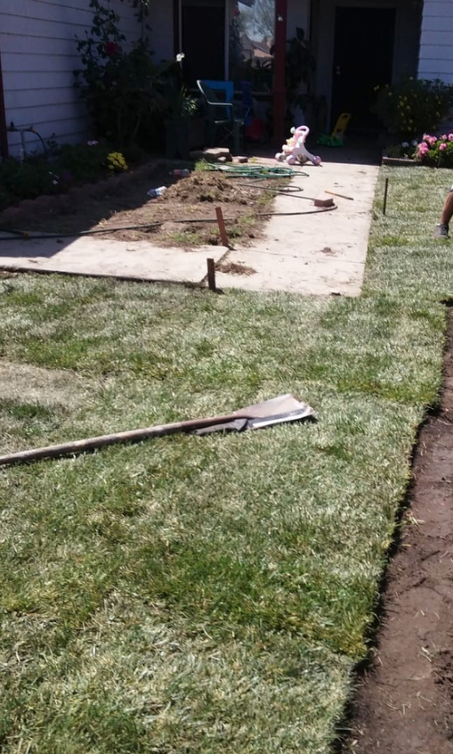 Yard mowing company in Manteca, CA, 95336
