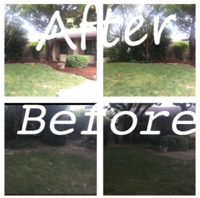 Yard mowing company in Modesto, CA, 95355