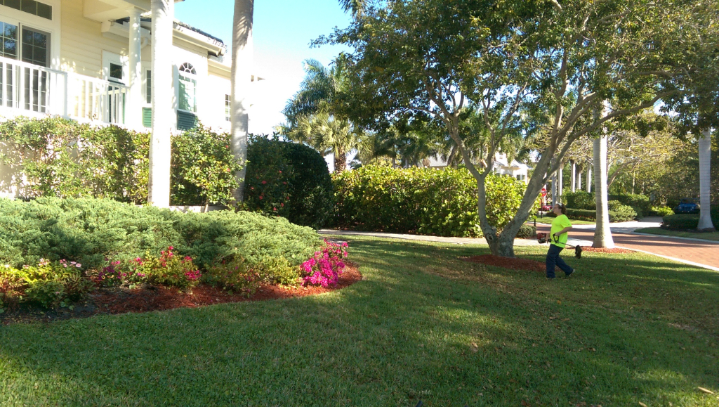 Yard mowing company in Cape Coral, FL, 33914