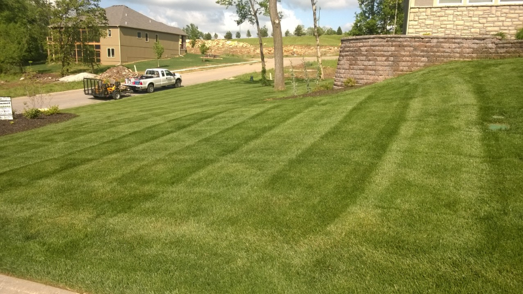 Yard mowing company in Jefferson , GA, 30549