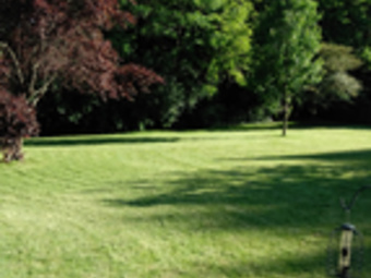 Yard mowing company in Indianapolis, IN, 46226