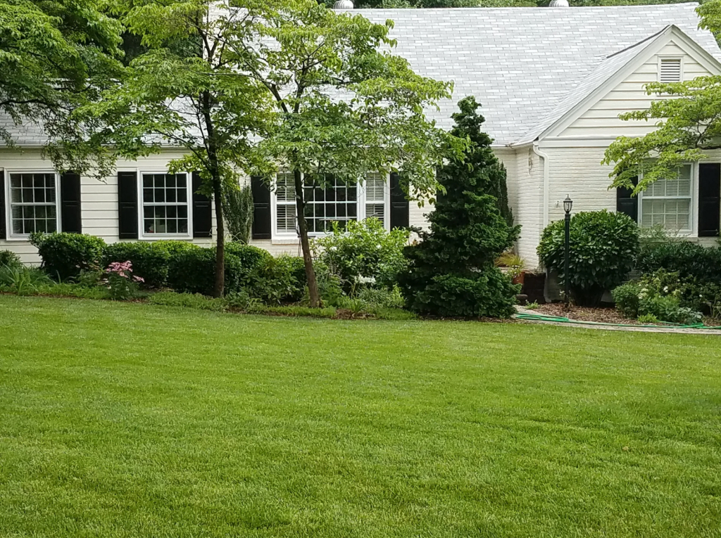 Yard mowing company in Raleigh, NC, 27615