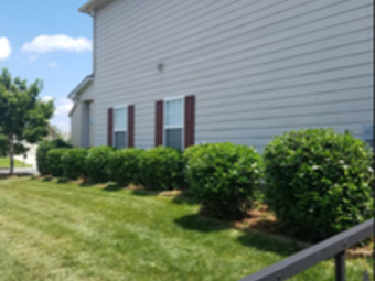 Yard mowing company in Indian Trail, NC, 28079