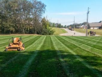 Yard mowing company in Raliegh, NC, 27615