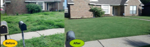 Yard mowing company in Houston, TX, 77086