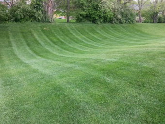 Yard mowing company in Greenwood, IN, 46142