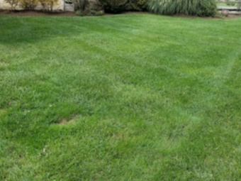 Yard mowing company in Clarksville, OH, 45219