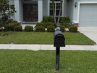 Yard mowing company in St.Petersburg, FL, 33703
