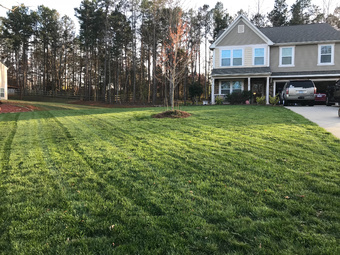 Yard mowing company in Charlotte , NC, 28227