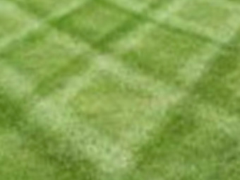 Yard mowing company in Centerburg , OH, 43011