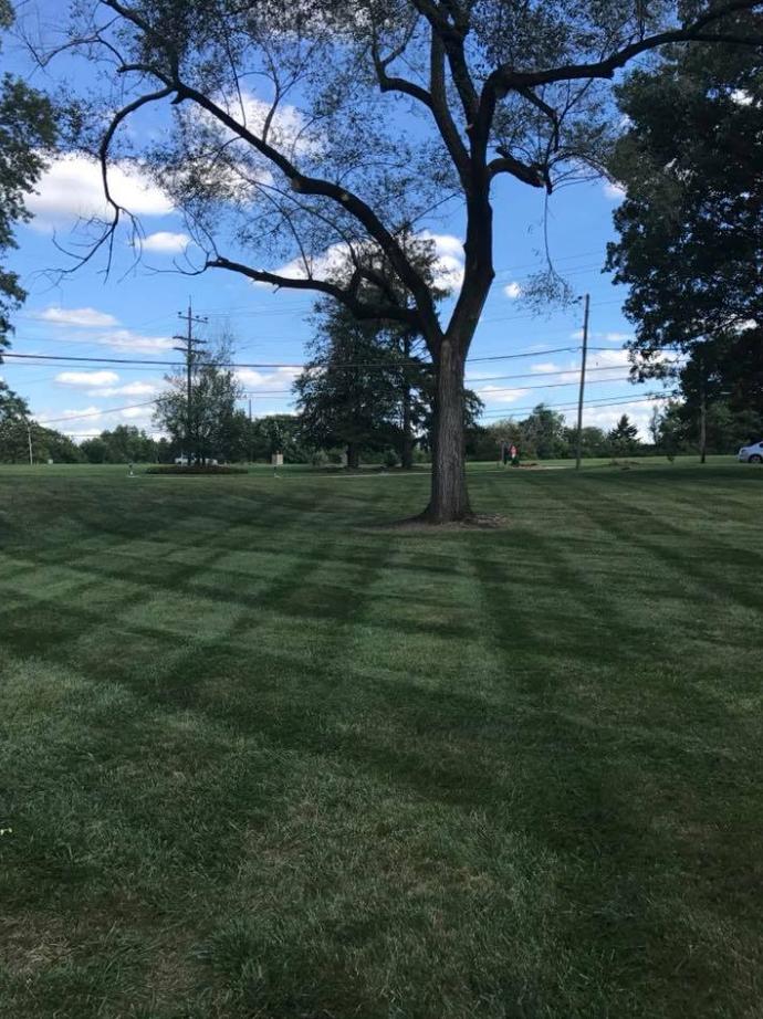 Yard mowing company in Cincinnati, OH, 45245