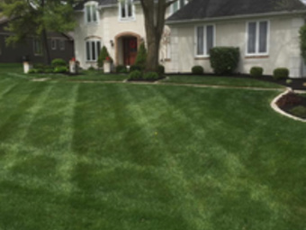 Yard mowing company in Columbus, OH, 43224