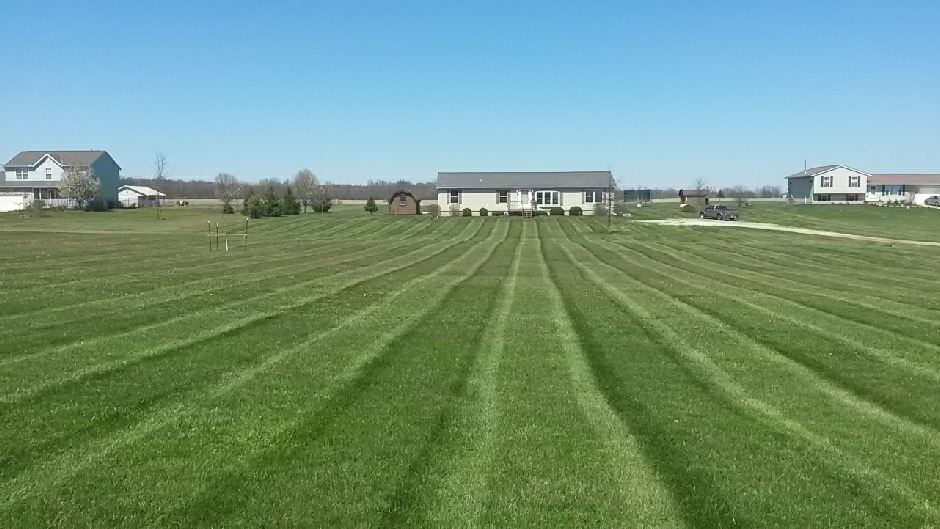 Yard mowing company in Indianapolis, IN, 46217