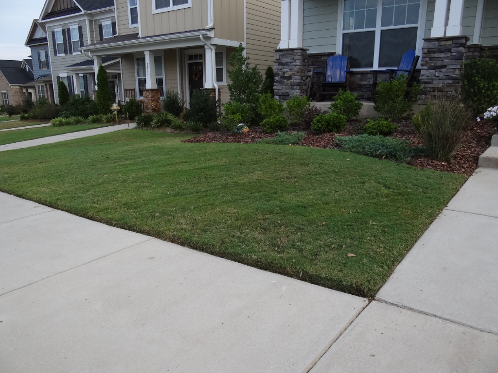 Yard mowing company in Charlotte, NC, 28206