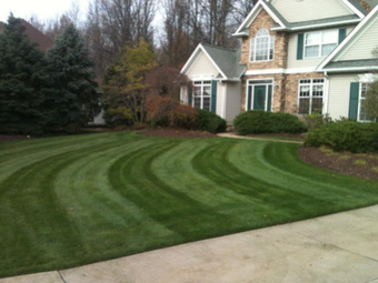 Yard mowing company in Mentor On The Lake, OH, 44060