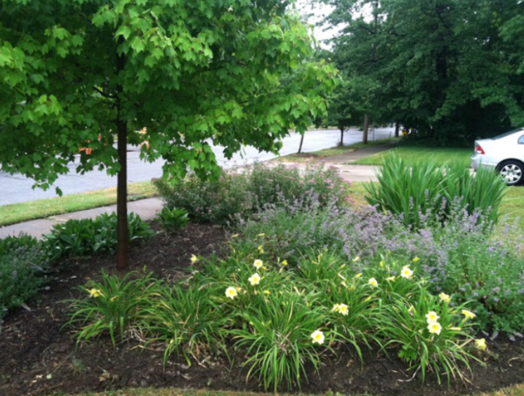 Yard mowing company in Cleveland , OH, 44106