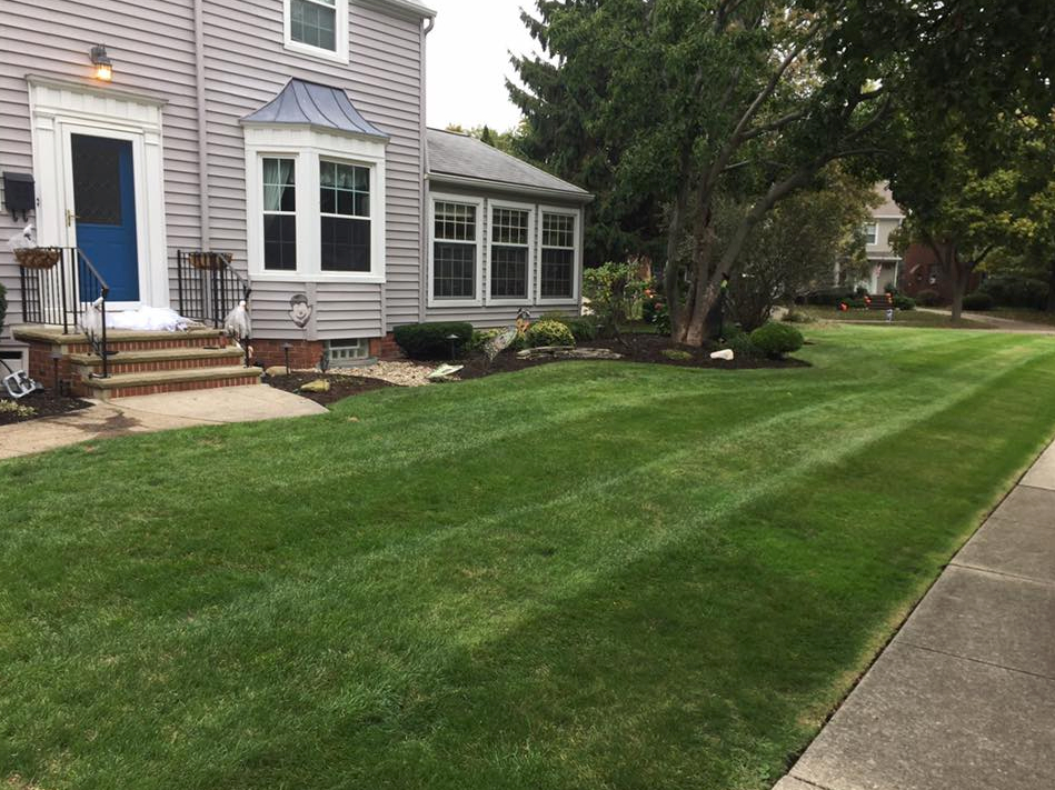 Yard mowing company in Lakewood, OH, 44107