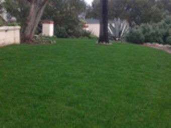 Yard mowing company in Vista, CA, 92084
