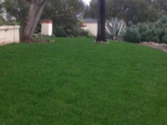 Yard mowing company in Vista, CA, 92084